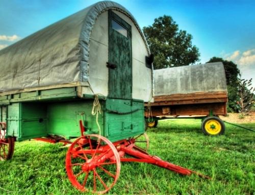 Sheep Herder Wagons